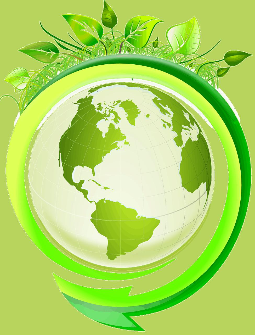 Sensibilisation écologique en PLV
